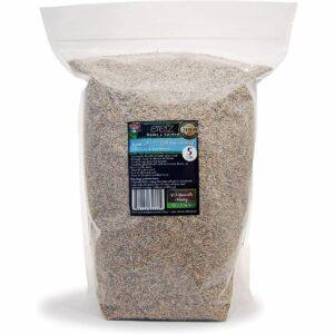 La mejor opción de semilla de hierba de festuca alta: Kentucky 31 K31 Semilla de hierba de festuca alta de Eretz