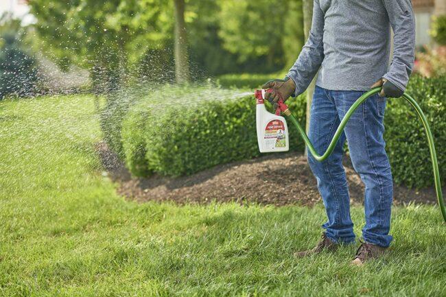 El mejor spray para garrapatas para opciones de jardín