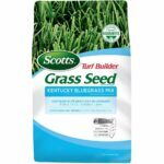 La mejor opción de semilla de Kentucky Bluegrass: Scotts Turf Builder Grass Seed Kentucky Bluegrass Mix